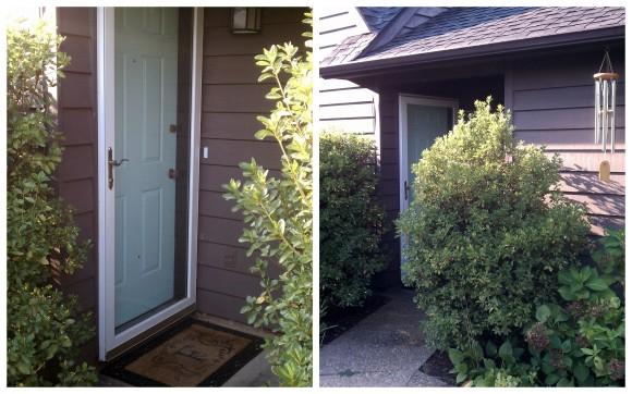 Front door, after