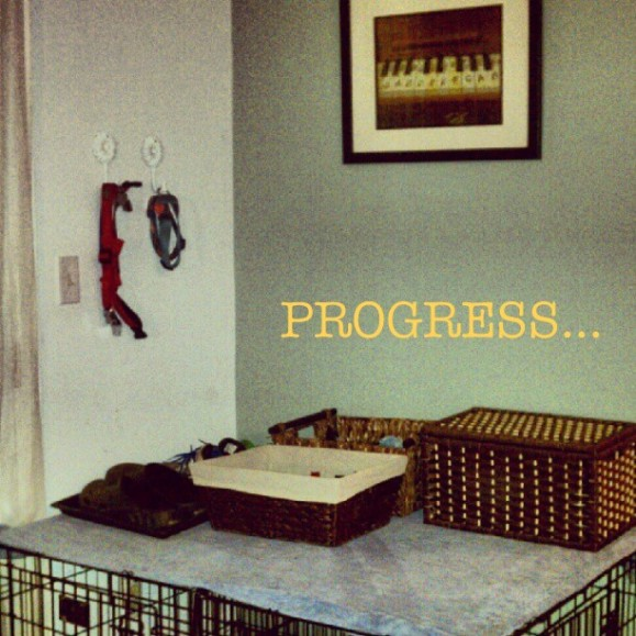Crate project progress